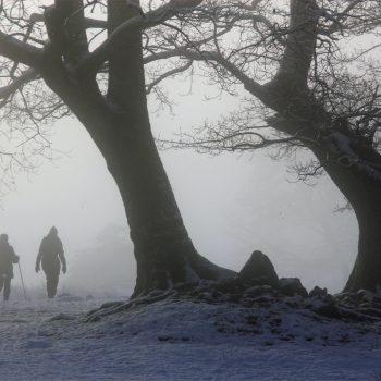 benefits-winter-walking